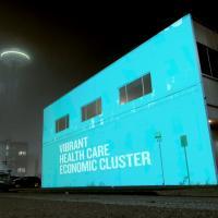vibrant health care econ cluster_square